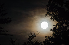 moon trail (Danyel B. Photography) Tags: moon mond night nacht sky himmerl wolken clouds wolkig cloudy tokine 100 300 sony a77