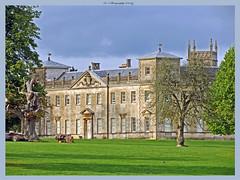 Lydiard House, Swindon (dark-dawud) Tags: wiltshire swindon lydiard lydiardpark lydiardhouseswindon england house estate trees grounds treetrunk