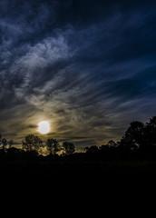 Sunset Tasmania (Steven Penton) Tags: tasmania australia hadspen subset