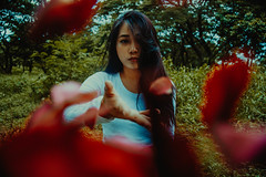 IMG_9420 (Niko Cezar) Tags: set sail supply co cai pacaon canon portrait university of the philippines up low light 24105 mm 5omm product shot flowers red warm nature hypebeast modern notoriety