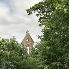 (Mark Greening) Tags: bristol church building tree plane horfield england unitedkingdom gb