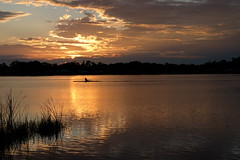 Morning Row (River-Life) Tags: riverlife nikon d5300 outdoors outdoor florida nature sebringfl