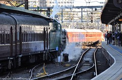 Transport Heritage Expo 2017 - Not a scene from the fifties! (john cowper) Tags: transportheritagensw transportheritageexpo railtransportmuseum centralrailwaystation heritagesuburbantrain 3642 f1 platform2 nswrailways nswgr sydney newsouthwales newsouthwalesrailways