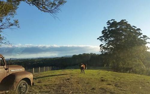7 Gordons Knob Road, Nambucca Heads NSW 2448