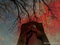 Sous les arbres (JEAN PAUL TALIMI) Tags: talimi solitude statue automne arbre silouettes rouge perelachaise cimetièredupèrelachaise iledefrance france ville lignes femme