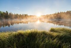 Breathe (Juh-ku) Tags: waterscape landscape scenery finland morning still calm serene tranquil fog foggylandscape sun sunrise water light