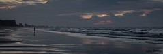 Lone Survivor (flintframer) Tags: man lone walking daybreak beach myrtle north carolina south wow dattilo canon markii eos 7d ef 1635mm