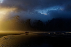 Iceland (Hemo Kerem) Tags: iceland island a7rm2 a7rii loxia35 zeissloxia35mmf2biogon loxia35mmf2 loxia235 landscape travel roadtrip green water sea horses zeiss loxia 35mm biogon manualfocus mf sony sonya7rm2 ilce7rm2 alpha sunset