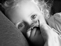 Blanket (phil_1_9_7_9) Tags: blankey blanket nikond700 nikon fullframe highiso home comfort blackwhite bw blackandwhite family content eyes sparkle sniff childhood