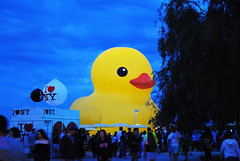 Duck at night (apta_2050) Tags: toronto harbourfront waterfront lakeshore lakeontario redpathwaterfrontfestival canadaday canada150 artinstallation publicart rubberdeck