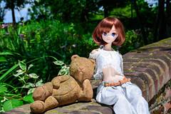 Hikari at Andy & William Botanical Garden (AsepsFire) Tags: smartdoll doll starlight culturejapan hikari kawaii garden andywiliian nikond7200
