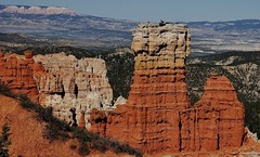 Another view in Bryce Canyon National Park (Susan Roehl) Tags: nationalparkstour2017 brycecanyonnationalpark utah usa paunsauguntplateau rockformations distinctgeologicalstructures southwesternutah settledbymormons ebenezerbryce 35835acres sueroehl panasonic lumixdmcgh4 100400mmlens handheld cliff landscape ridge trail slightlycropped outdoors ngc
