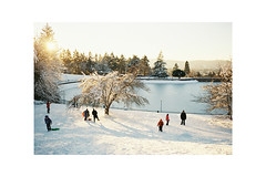 (Julie Stutzman) Tags: oregon winter wintersun mttabor portland snow sledding sunset ne snowday film analog contaxt3
