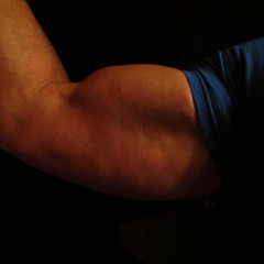 FLEXING BIG BICEPS (flexrogers7) Tags: muscle muscles muscular strong bicep biceps bizeps flex flexing abs chest pecs delts traps triceps huge round guns workout weightlifter exercise bodybuild bodybuilding bodybuilder thick mondo shoulders lats hugebiceps big ripped hard peak peaked jacked