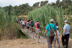 08072017-_POU7974 (Salva Pou Fotos) Tags: 2017 ajuntament fradera grupsenderista observatorifauna pont aiguamolls barberàdelvallès caminada pou