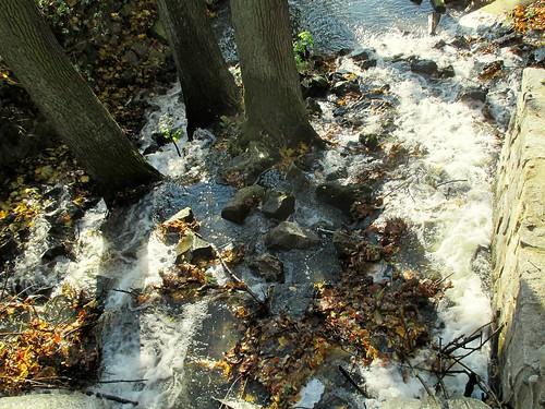Propojení mezi rybníky Obora a Hastrman