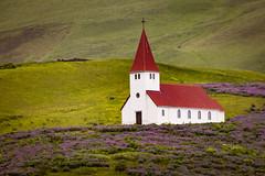 Víkurkirkja III (Jack Landau) Tags: víkurkirkja vik church iceland hills mountains mist fog rain grass flowers landscape nature jack landau