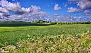 Norddeutsches Landschaftspanorama