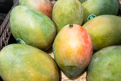 Mangos (wuestenigel) Tags: köln nordrheinwestfalen deutschland de noperson keineperson juicy saftig fruit frucht food lebensmittel tropical tropisch nutrition ernährung delicious köstlich health gesundheit pasture weide exotic exotisch fall fallen grow gröserwerden nature natur market markt farming landwirtschaft roundout runden vitamin whole ganze confection konfekt ingredients zutaten