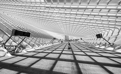 shadows on Guillemins (Blende1.8) Tags: liegeguillemins liègeguillemins liège belgium belgien banhhof station trainstation shadows shadow schatten licht light lines wideangle santiagocalatrava architecture architektur modern contemporary urban linien mono monochrome monochrom schwarz weiss carstenheyer sony a7ii a7m2 ilce7m2 voigtländer voigtlaender 12mm ultrawideheliar