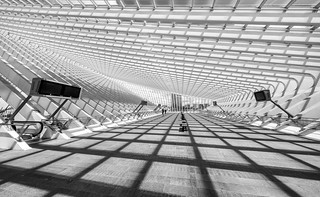 shadows on Guillemins