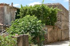 P1000601 (FAJM) Tags: greece syvota sivota thesprotia epirus σύβοτα θεσπρωτία ήπειροσ ελλάδα φιλιάτεσ filiates