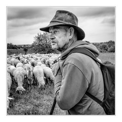 Shepherds view (sdc_foto) Tags: sdcfoto street pentax pentaxart k1 bw blackandwhite shepherd work outside portrait germany giesen 2017 nature pentaxflickraward