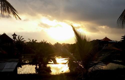 Sunset stroll, Ubud, Bali