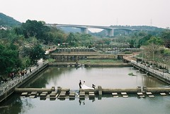 Wedding Photos (YL.H) Tags: 新竹 牛欄河 關西 底片 film analogy fujicolor fujifilm canon taiwan river
