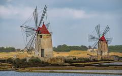 two Marsala windmills (Alida's Photos) Tags: sicily marsala italy windmills saltflats salt