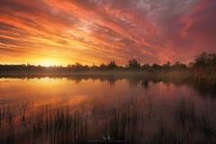 Mary Lake - Redding, CA. (wesome) Tags: adamattoun sunrise sunset redding marylake