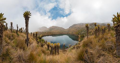 Laguna La Llorona