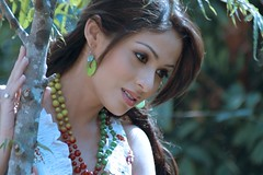 Indian Actress SADA Photos Set-2 (32)