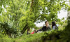 A green-ish frame to fill in street love. (Pranava Sharma) Tags: street summer city love nikon d750 tamron 70200g2 70200 green streetlove framed washington seattle fremont solstice bokeh g2