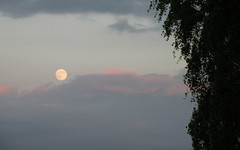 strawberry moon june 08,2017 (1) (kexi) Tags: moon strawberrymoon fullmoon sky clouds evening june 2017 poland jastrzebiagora nikon coolpix instantfave simple thebluehour