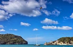 Port de Soller (Simple_Sight) Tags: summer mallorca ocean island holidays blue sky clouds port harbour portdesoller