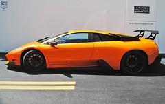 ReadyMix Concrete Lambo (Infinity & Beyond Photography) Tags: readymix concrete lambo lamborghini murcielago orange exotic sports car supercar miami florida exotics cars supercars