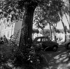 fiat 500 (Claudio Castelli) Tags: two people street italy fisheye tree wood surreal fairy one vehicle pentaconsix group parking surrealism tuscany vintage car enchanted grosseto fiat500 noperson