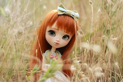 Maddi - Pullip Full Custom par Poison Girl (Nickocha) Tags: pullip doll dolls poison girl pulip maddi creadoll party obitsu ooak carrot hair campagne nature french