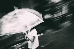 weight of the winds (bogey!) Tags: yangon threetreasures urban monochrome street umbrella bw myanmar rain city girl