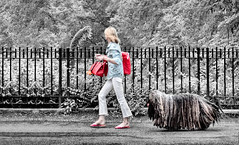walking the dog in Central Park (marianna_a.) Tags: dog walker lady red accessories fence friday hff centralpark newyork nyc usa p1360818 marianna armata bergamascoshepherd shepherd italy