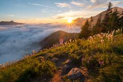 Transformation 3 (Laura Jacobsen) Tags: alpinelakeswilderness bandera banderamountain hiking i90 iraspringtrail littlebandera mountains sunburst sunset trails washington wildflowers