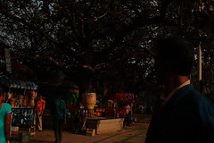 IMG_0658 (dr.subhadeep mondal's photography) Tags: streetphotography street subhadeepmondalphotography kolkata india indianstreet outdoor people urban life daily color canon calcutta