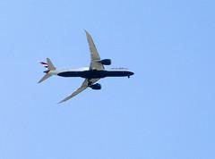 Kew:  British Airways Boeing 787-9 G-ZDKL (Bill in DC) Tags: uk london kew royalbotanicgardens 2017 thehive airplanes ba britishairways boeing boeing7879 gzdkl