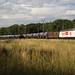 BLS Re 465 Kambly et Re 425 avec un train de citernes à Gollion