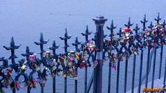Cadenas des amoureux, Prague - 3476 (rivai56) Tags: prague prahia républiquetchèque sonyphotographing tchéquie cz cadenas des amoureux