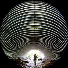 What the Passage Means (Thomas Hawk) Tags: america glendale julia juliapeterson oregon southernoregon usa unitedstates unitedstatesofamerica mrsth silhouette spouse tunnel wife fav10 fav25 fav50 fav100