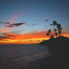 189 : 365 : VI (Randomographer) Tags: project365 lahaina hawaii sunset beautiful landscape beach blue orange sky palm tree silhouette water nature colorful 189 365 vi