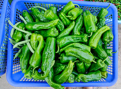 Spicy green chillies at a rural market (phuong.sg@gmail.com) Tags: agriculture asia asian background burn capsaicin capsicum cayenne chile chili chilli chillie chilly chily close closeup cook cooking detail ethnic fiery flavoring food fresh fruit green heat hot hottest india indian indonesia indonesian ingredient mexican nepal organic paprica paprika pepper pile pungent red salsa serrano spice spicy taste thailand vegetable whole