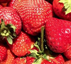 Sweet strawberries (piotrkaminski) Tags: summerfruits summer food healthfood nature green red fruits fruit strawberries sweetstrawberries🍓 sweet